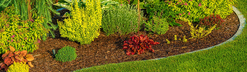 Landscaping Design and Construction
